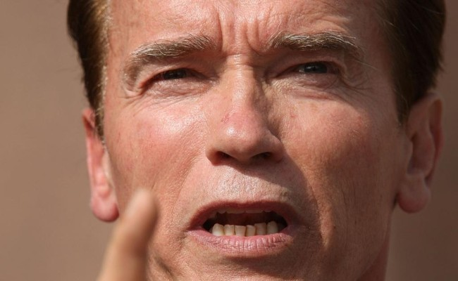THE LEGEND OF CONAN to Star Arnold Schwarzenegger!