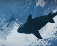 GRAND THEFT AUTO V: Sharks & Jets in New Screens