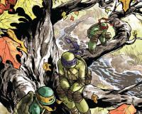 Teenage Mutant Ninja Turtles #29 Review