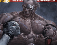 Bloodshot And H.A.R.D. Corps #18 Review
