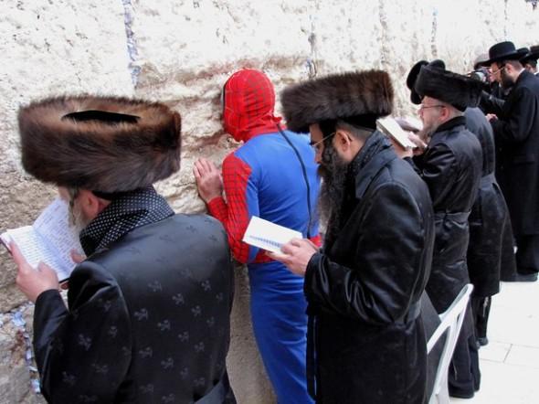 spiderman_kotel