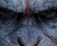 DAWN OF THE PLANET OF THE APES: A Journey Through The Fall Of Man