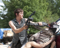 THE WALKING DEAD's Daryl Dixon May Be Gay, And I Wish This Wasn't News