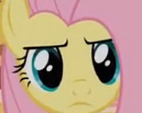 My Little Pony: Friendship is Magic 'Keep Calm and Flutter On' Review